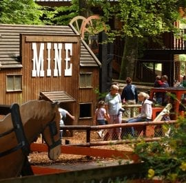 Golden Bear City Mine