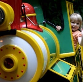 Circus Drome Train Attraction