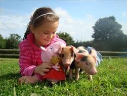 Zoo Farm Devon Day Out
