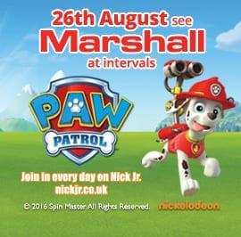 Paw Patrol Marshall -  26th August 2016